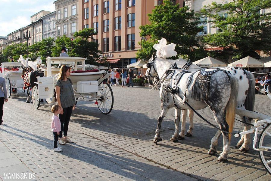 Carroza de caballos en el centro de Cracovia